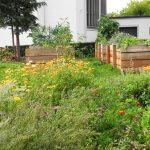 Der gesamte Stadtteilgarten im Stadtteil Grübentälchen in Kaiserslautern